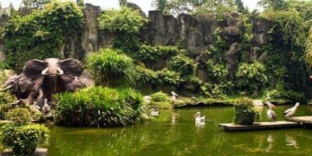 Kebun Binatang Ragunan kebun binatang ragunan jam kebun binatang ragunan terletak di kebun binatang ragunan pasar minggu indonesia