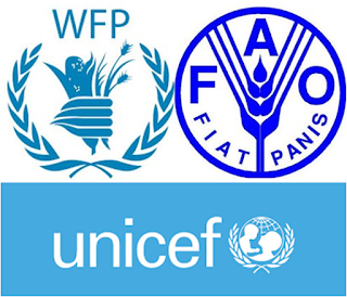 FAO, UNICEF, WFP deploy massive relief operation