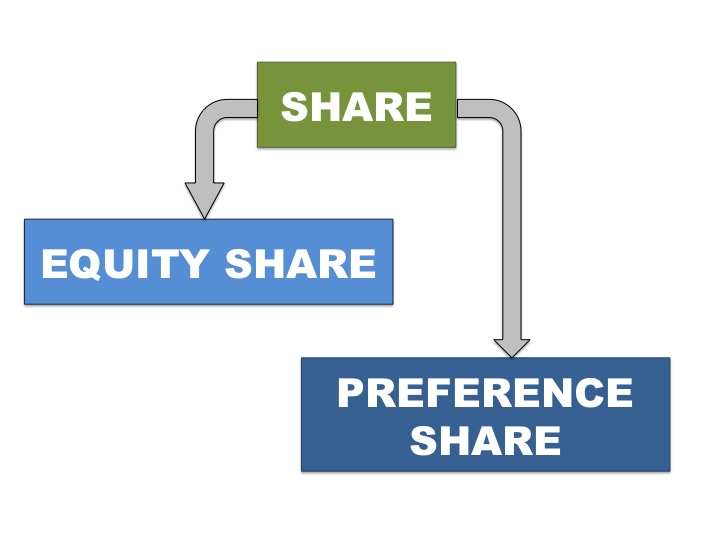 Equity Share and Preference Share