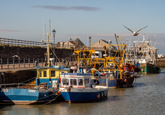 Photo of some of the fishing boats in Maryport Harbour