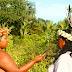 Rádio web indígena divulga programação especial na semana da mulher