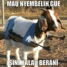 """""""Lucu Dan Gokil3"""""""