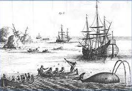 pêche chasse baleine