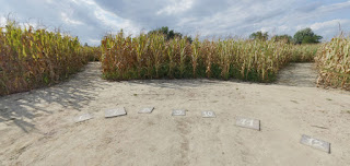 Interno labirinto Alfonsine