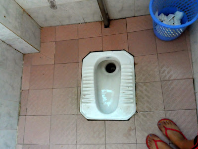 WC-Toilets-Commodes-Whatever You Want to Call Them
