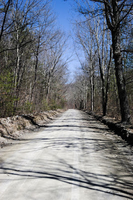 Murray Hollow Road