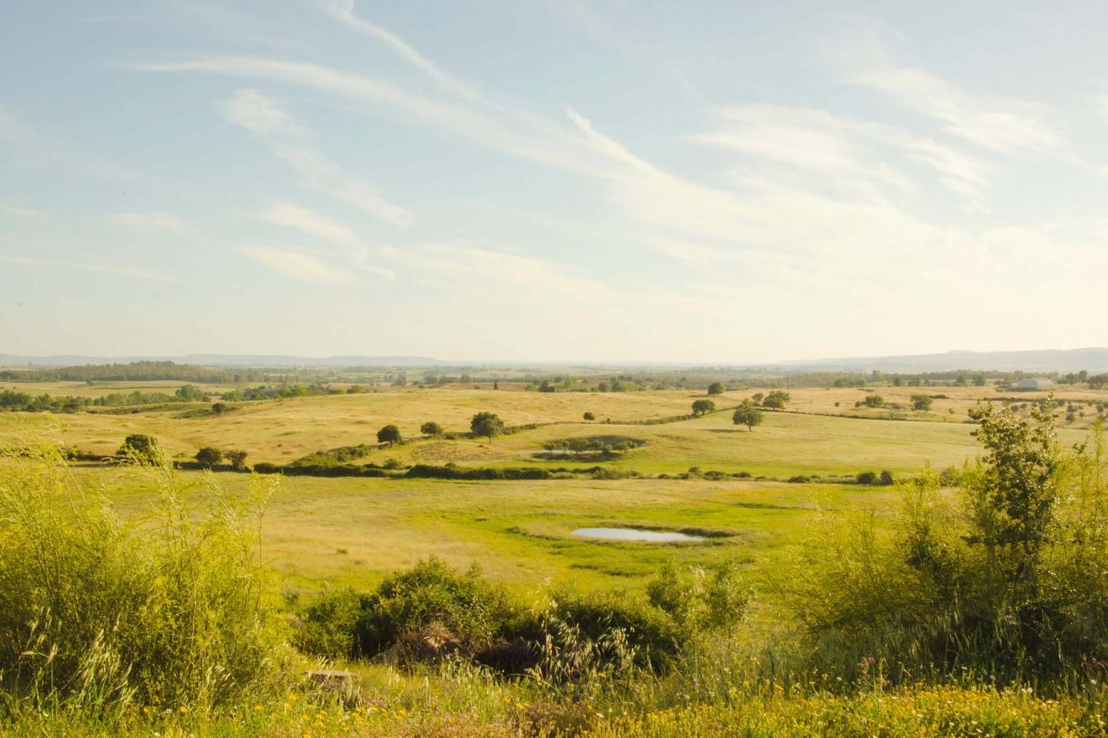 beira baixa - spring - countryside - simple life