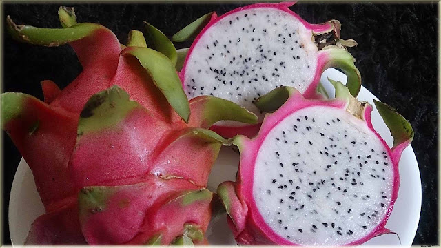 dragon fruit wallpaper