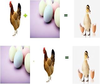 Tavuk mu Yumurtadan Çıkar ? Yumurtamı Tavuktan Çıkar ?