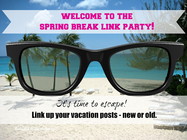Spring Break Link Party - Link up vacation posts until April 25, 2016