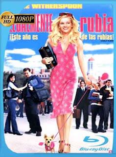 Legalmente Rubia (2001) HD [1080p] Latino [GoogleDrive] SilvestreHD