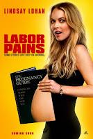 Un trabajo embarazoso (2009) online y gratis