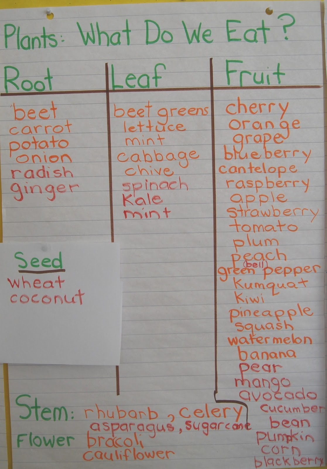 Ms Brown S Classroom Needs Of Living Things