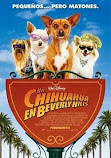 Un chihuahua en Beverly Hills 1 online latino 2008