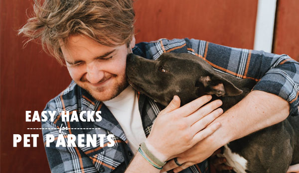 easy hacks for pet parents - pet parent - pet parenting - pets- home - dogs - a man's best friend