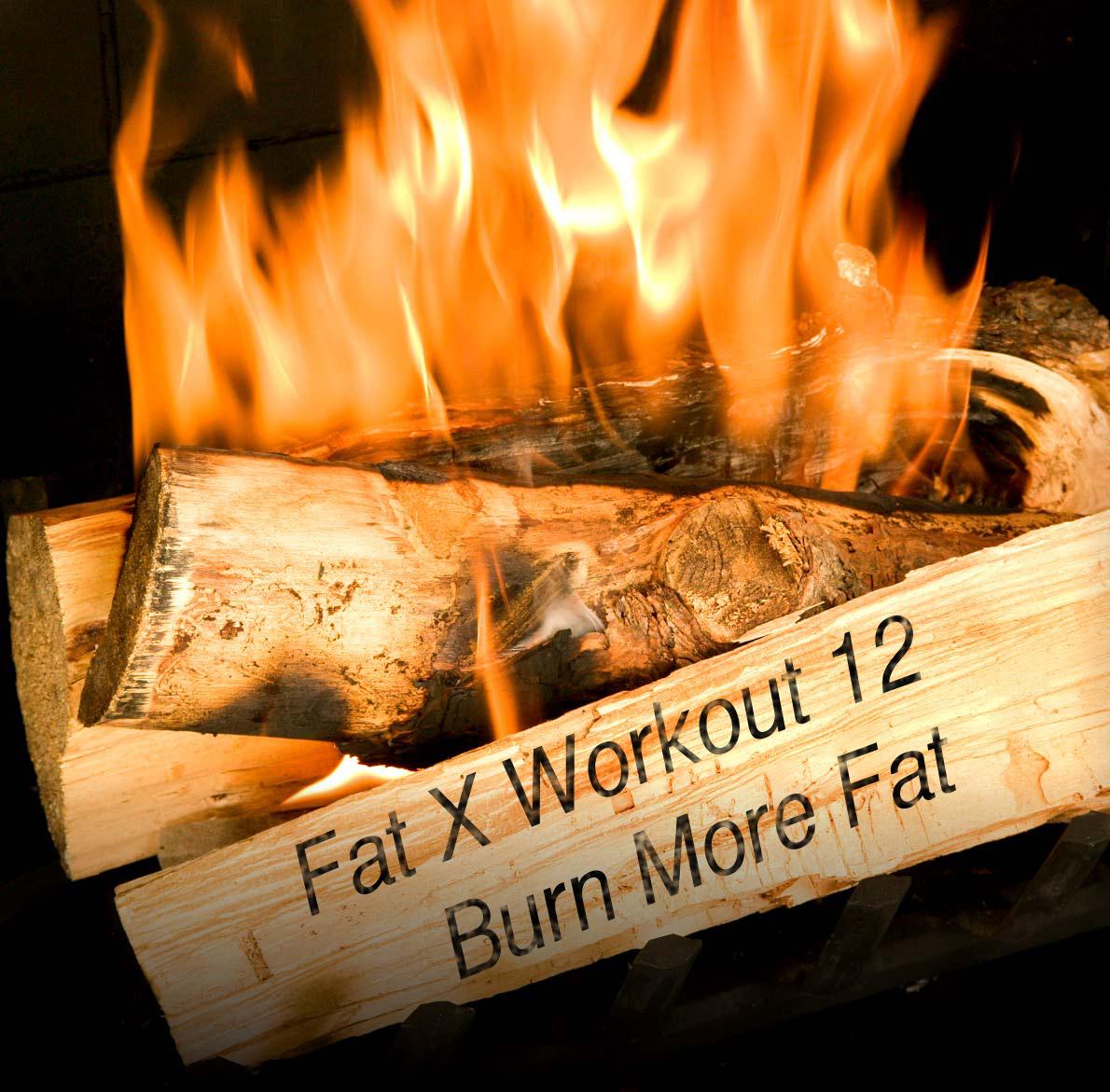 Fat Burning Workouts - 12 Day Program - Workout Videos -8812