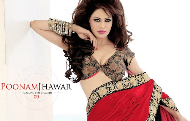 In Saree Poonam Jhawar New Bollywood Actress Pics 2016 Dirty Picture Hot Painting