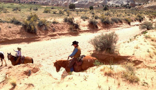 Camping And Horses Southern Utah