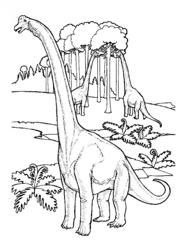 giraffatitan coloring pages | Extinct Animal of the Week: July 2011