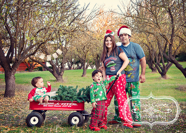 Including the radio flyer cute christmas family