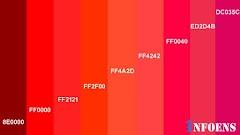 10 Best Red Color Palettes For Your Website Design