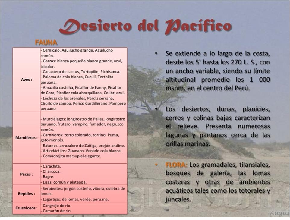 Flora Y Fauna Del Perú: FLORA Y FAUNA: FLORA Y FAUNA DEL PERU