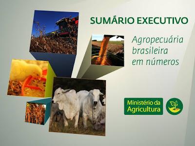 http://www.agricultura.gov.br/agroestatisticas/sumario-executivo-de-comercializacao-e-abastecimento