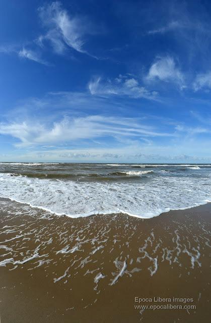 Beach of Dunes of Texel National Park, near De Koog village
