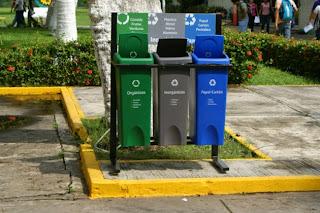 Basura orgánica y plástico
