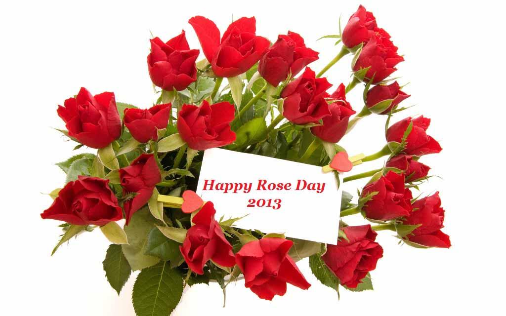 best whatsapp status in 2016 top 100 love rose hd wallpaper