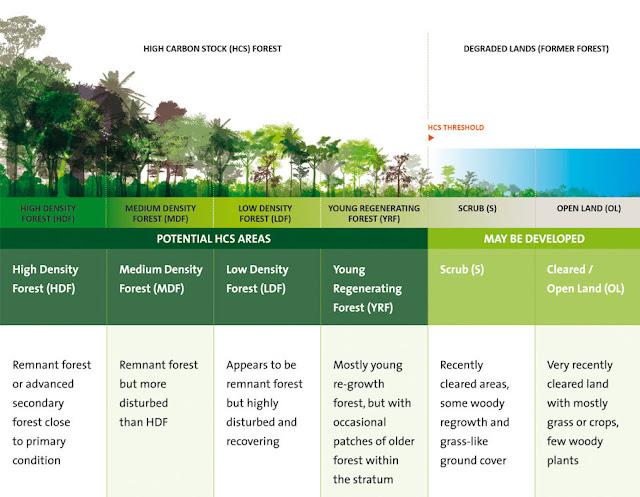 Pengklasifikasian Hutan Berdasarkan Tingkat Kepadatan & Ketersedian Karbon Areal Hutan. Sumber Foto : www.highcarbonstock.org