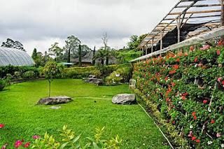 Kebun wisata Inkarla