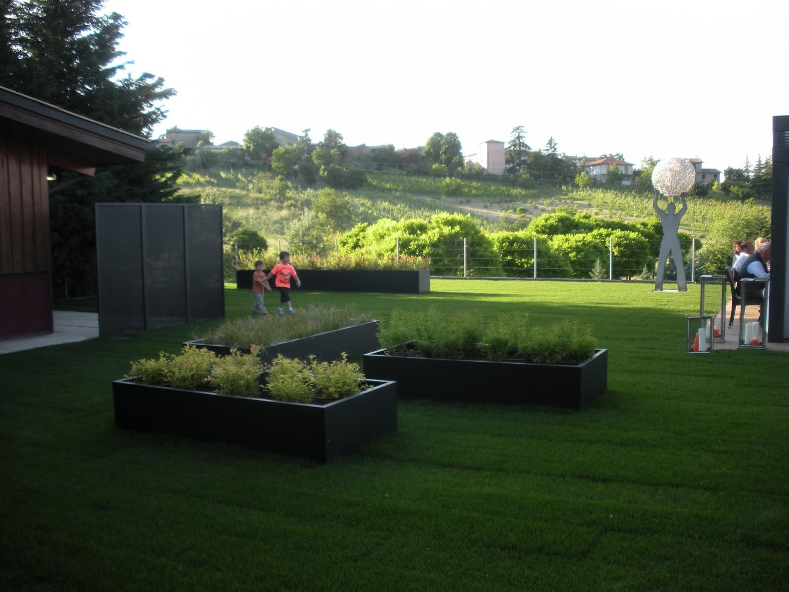 Piante Da Giardino Ombroso nel nostro blog puoi trovare uno spunto per le tue idee e
