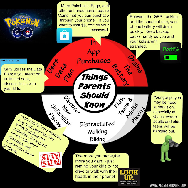 Pokemon Go Things to Know