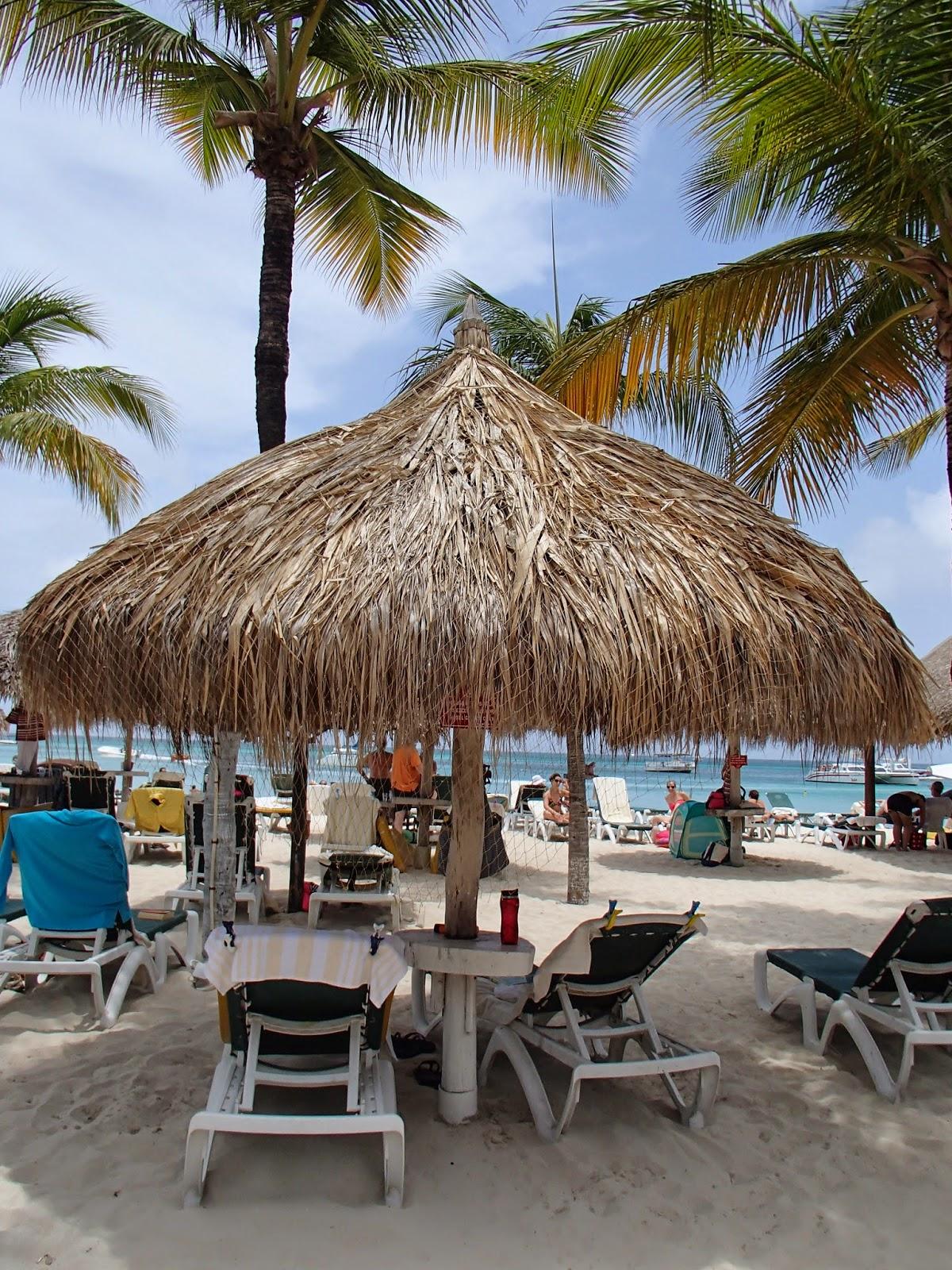 Palm Beach palapa
