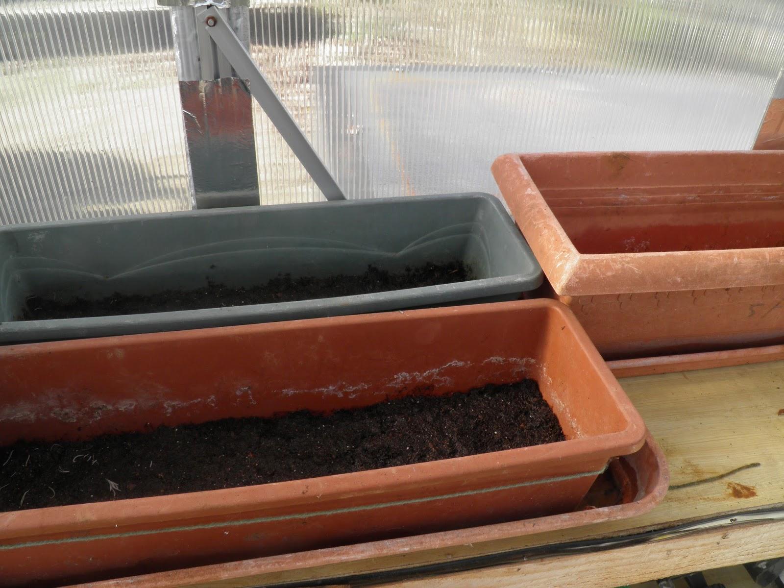 Mon jardin quercynois la serre reprend du service for Jardin service