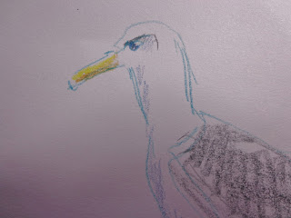 http://possumpatty.blogspot.com/2016/07/jersey-shore-gull-attitude.html