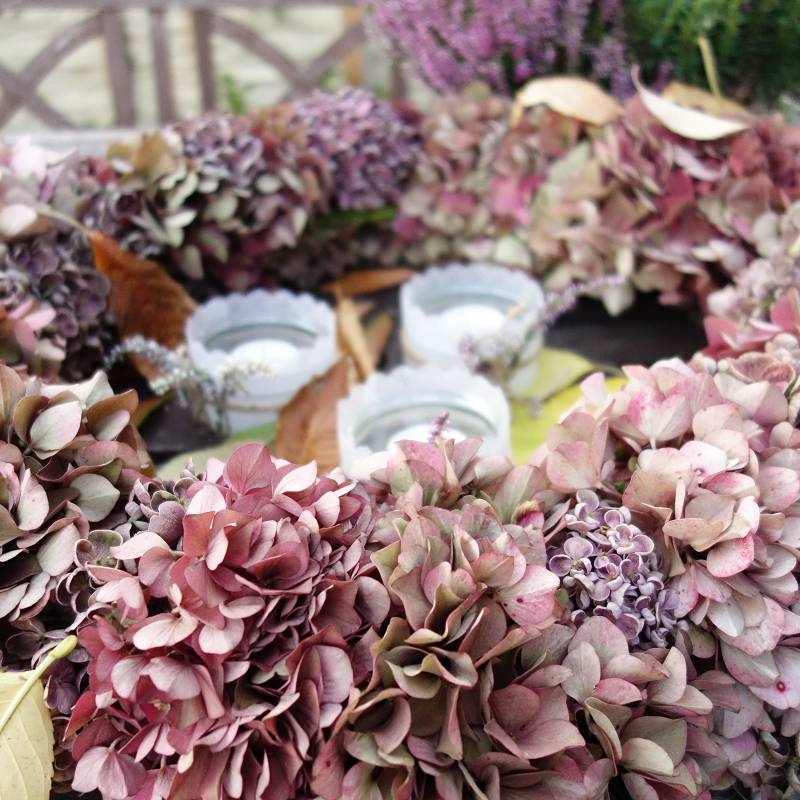 hortensienkranz, hortensienkranz binden, hortensienkranz selber machen, hortensienkranz frisch, hortensienkranz binden anleitung, hortensienkranz selber basteln, herbstkranz, kranz binden, kraenze aus naturmaterialien, kranz aus hortensien, diy blog,