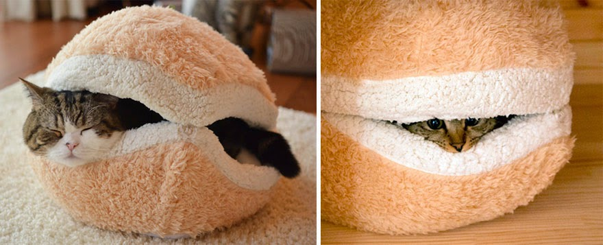 Pet Bed For Sofa Or Chair