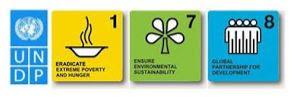 UNDP - Millennium  Development Goals