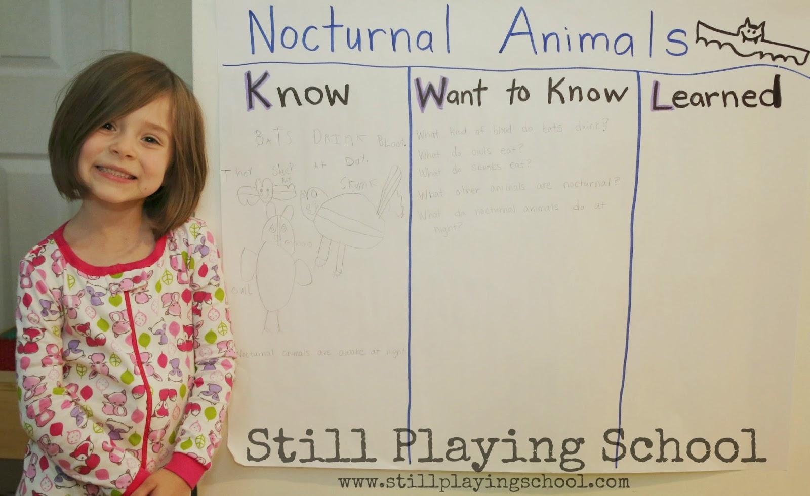Nocturnal Animals Preschool Unit Using A Kwl Chart