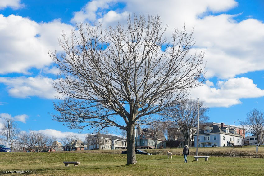 Portland, Maine USA April 2018 photo by Corey Templeton. Getting ready for spring on the Eastern Promenade.
