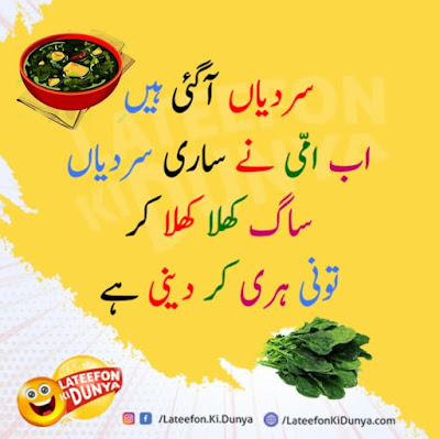 Image result for Lateefon ki Dunya
