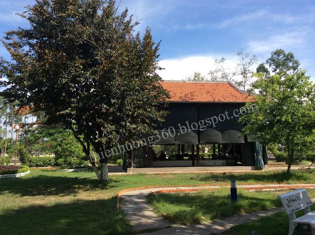 Nhà sàn Bác Hồ: Cây vú sữa Bác trồng sau nhà