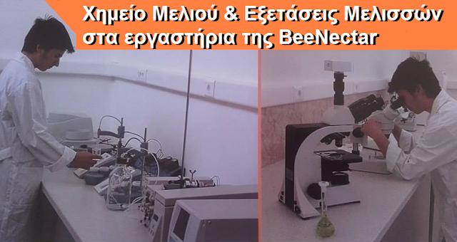 Εξετάσεις μελισσών, γόνου και μελιού στα εργαστήρια της BeeNectar: Οδηγίες για αποστολή δειγμάτων