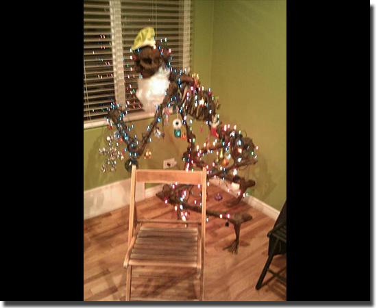 Natal Fail - As decorações mais infelizes do mundo - Árvore Esqueleto