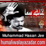http://www.humaliwalayazadar.com/2017/09/muhammad-hasan-jee-nohay-2018.html