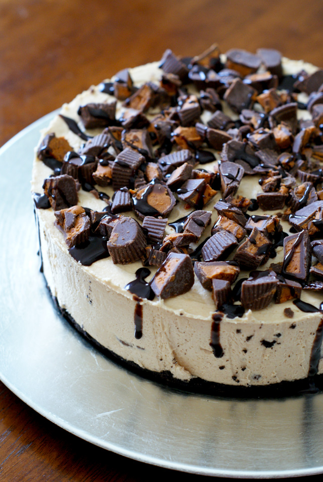 Peanut Butter Cup Overload No-Bake Cheesecake is for serious peanut butter lovers only!  Loaded with creamy peanut butter and loads of peanut butter cups, this simple no-bake cheesecake is a peanut butter lover's dream!