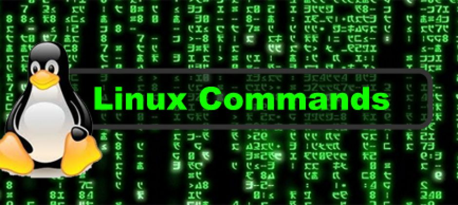 Date Command in Unix and Linux Examples | LPI Central