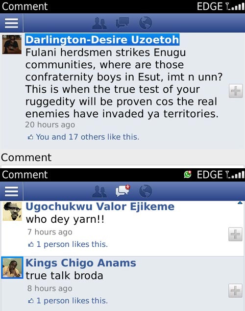 See What Someone Wrote About Fulani Herdsmen And ESUT Cultists On Facebook